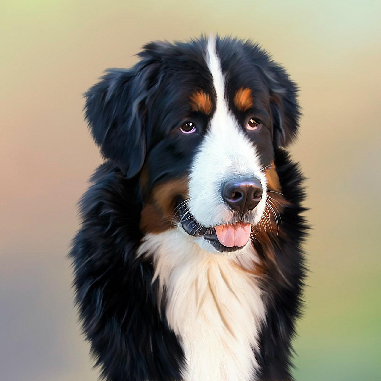 dog-287420_1280