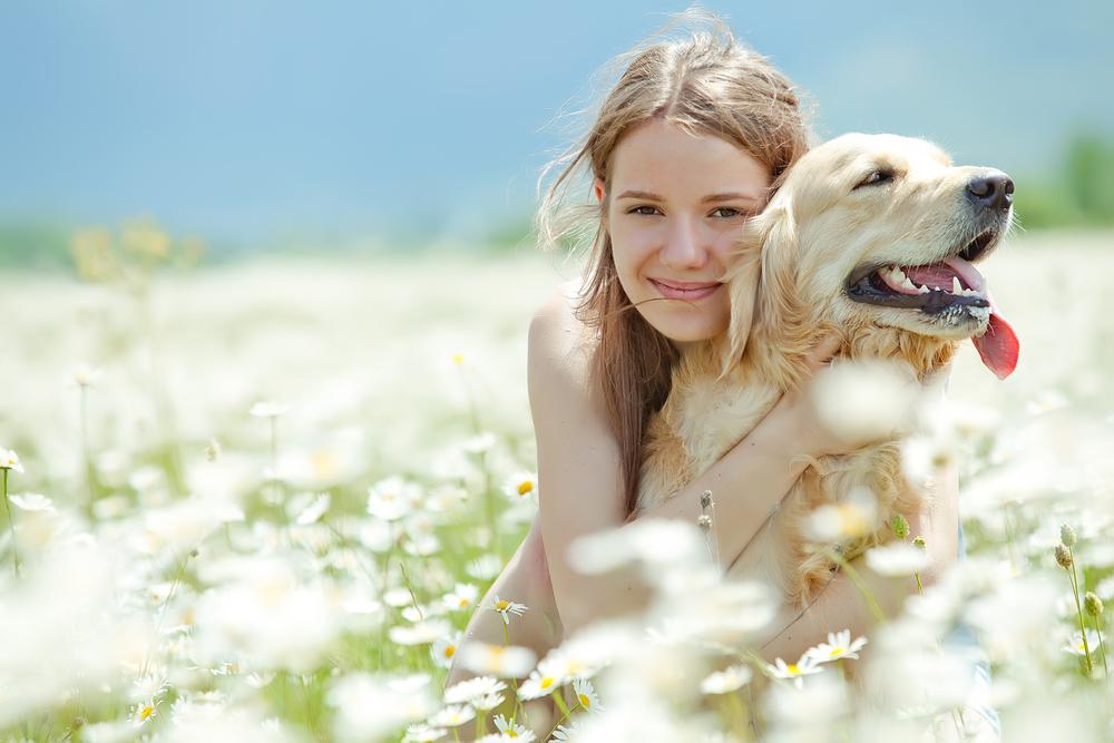 犬を愛情深く育てる