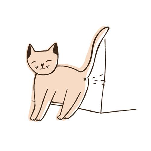 猫 尿スプレー
